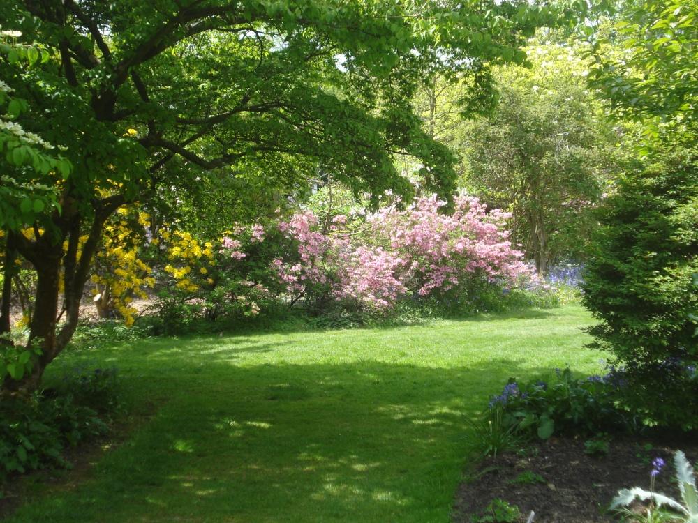 Nymans viaje a visitar jardines ingleses for Arboles preciosos para jardin